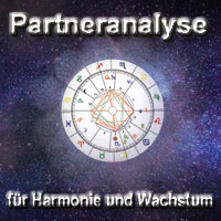 partneranalyse-2